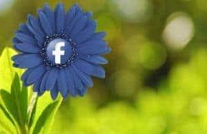 Facebook-suksess-B2B