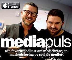 MediaPuls